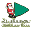 Strathmeyer Christmas Trees